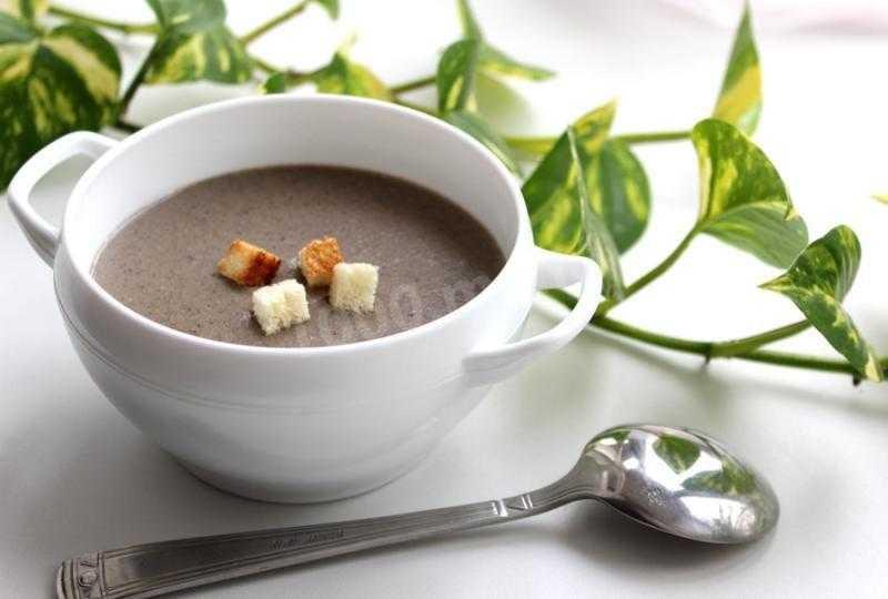 Суп-пюре грибной – классический рецепт приготовления