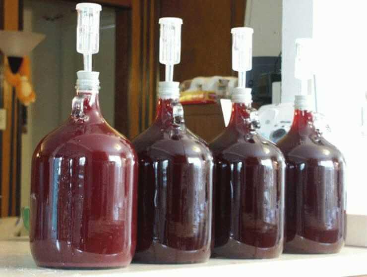 Вино из варенья в домашних условиях 9 рецептов - 1000.menu