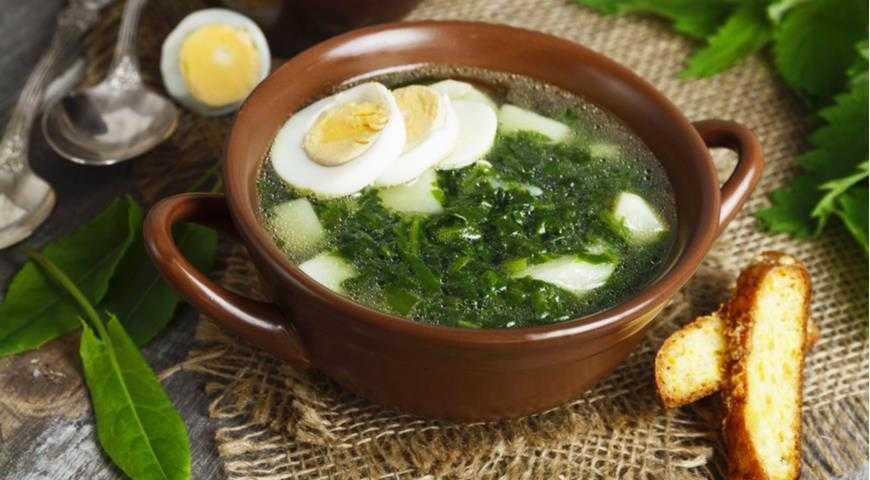 Суп из крапивы: простые рецепты с пошаговыми фото