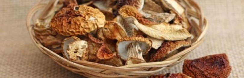 Способы сушки грибов и заготовка на зиму