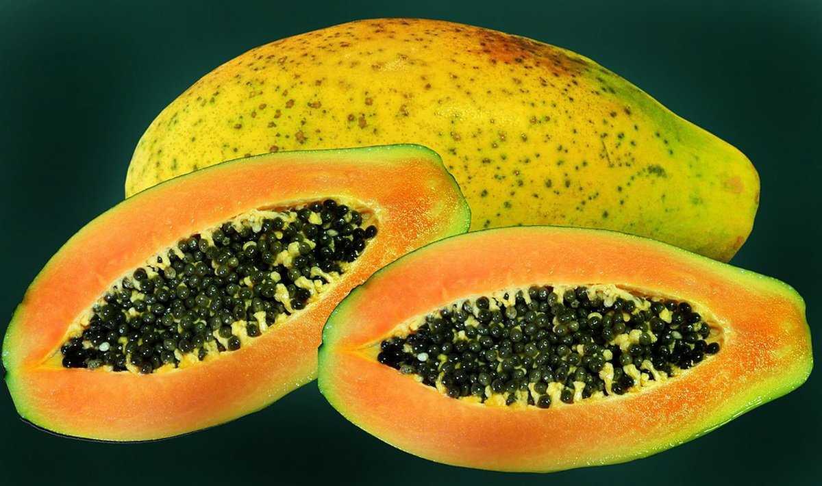 Папайя сушеная, вяленая: фото сухофруктов, состав, полезные свойства