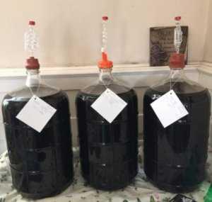 Зачем нужно пастеризовать вино: суть и эффективность процесса