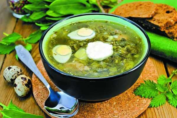 Супы из крапивы: как варить суп из крапивы с яйцом