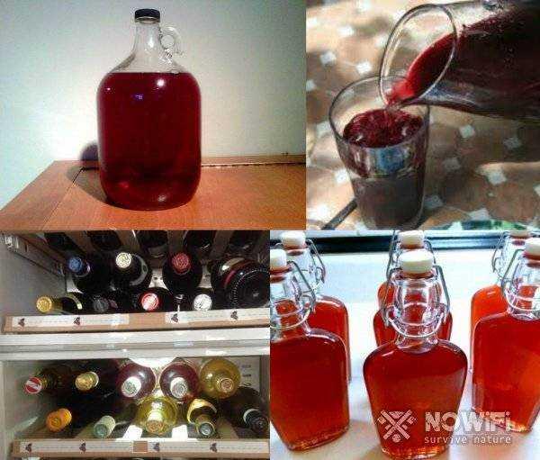 Вино из листьев винограда в домашних условиях: рецепт приготовления.