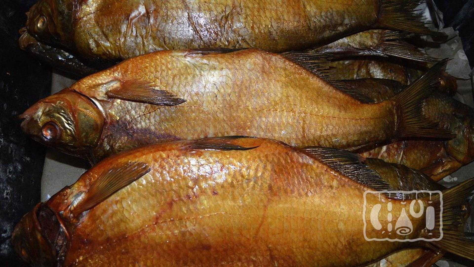 Лещ копченый рецепты приготовления дома. холодное и горячее копчение леща. подготовка к процессу копчения