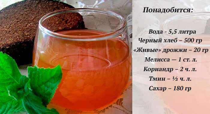 Лучший квас готовится на солоде: особенности и рецепты