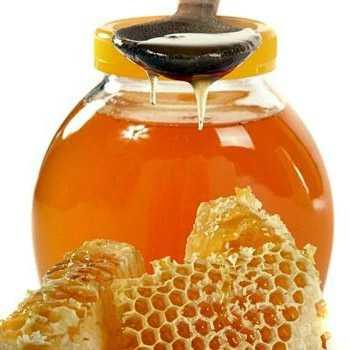 Медовуха на перге: рецепт приготовления в домашних условиях