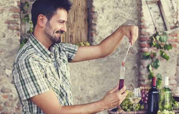 Как правильно отфильтровать вино в домашних условиях