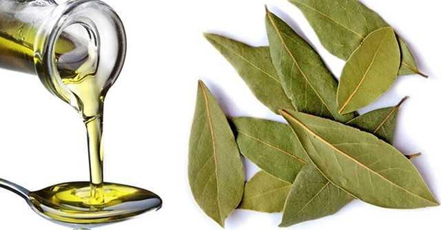 Свойства клюквы   полезные и лечебный свойства клюквы   компетентно о здоровье на ilive