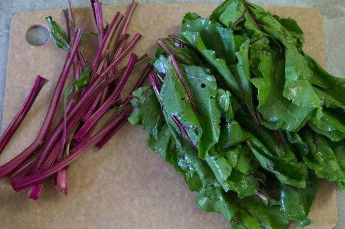 Салат из редиса, молодой свекольной ботвы и зелени. раздельное питание