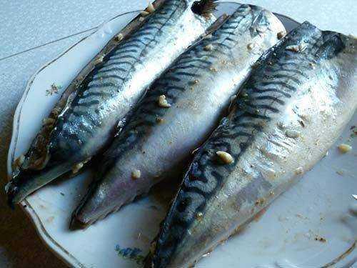 Как хранить копченую рыбу (холодного и горячего копчения) в домашних условиях, в холодильнике, в морозилке