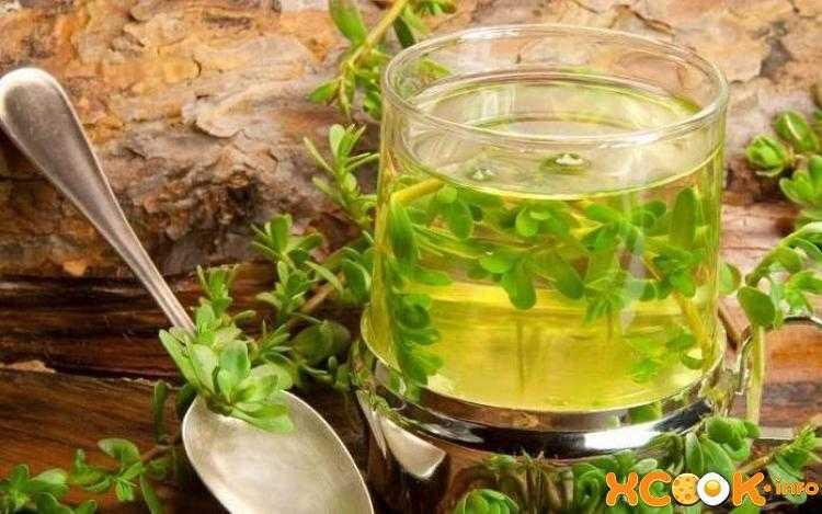Лечение бронхита и кашля медом с молоком, алое, луком и редькой