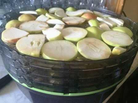 Как сушить яблоки в духовке электрической: советы по установлению необходимой температуры и режима конвекции русский фермер
