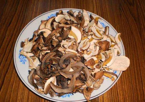 Как высушить белые грибы в домашних условиях: правила и сроки хранения
