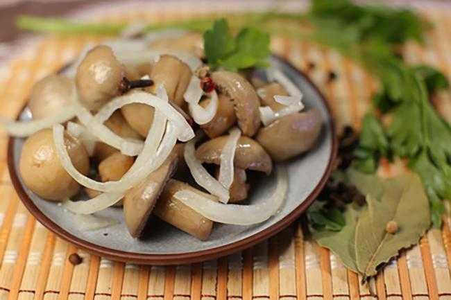 Какие блюда приготовить из маринованных грибов: фото и рецепты, что можно сделать с грибными заготовками