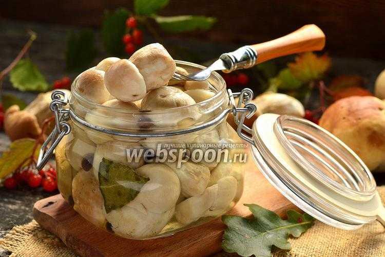 Пошаговый рецепт приготовления маринованных волнушек с картинками