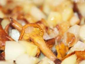 Как приготовить замороженные лисички: правила заморозки возможные варианты блюд тонкости процесса и сочетание с другими продуктами