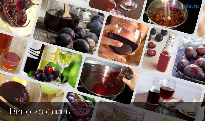 Вино из сливы в домашних условиях - пошаговые рецепты приготовления с фото