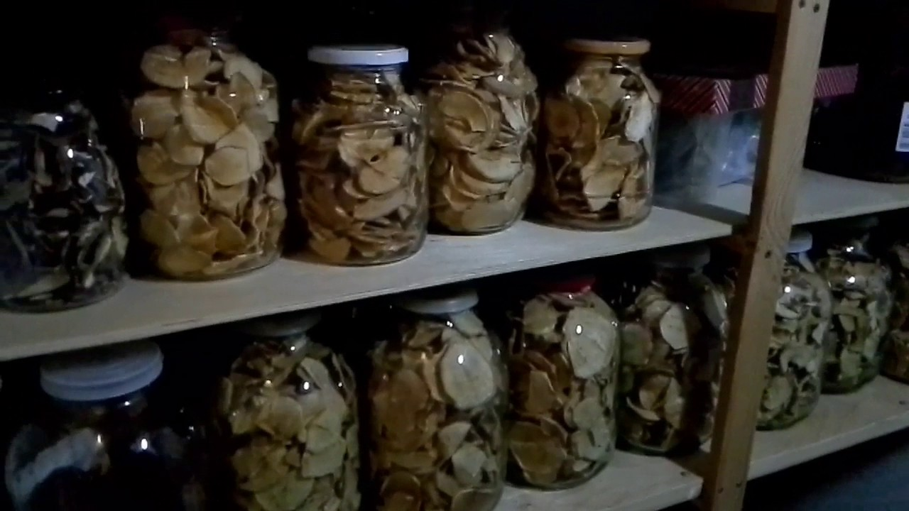 Как хранить маринованные грибы в домашних условиях в банке и после открытия