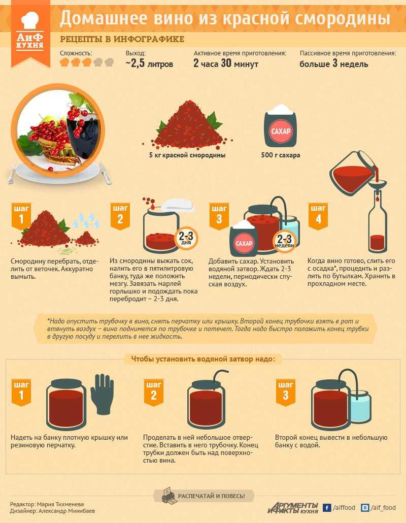 Рецепты вина из белой смородины с подробным описанием, варианты с дрожжами и без, крепленый напиток и полезные свойства ягоды.