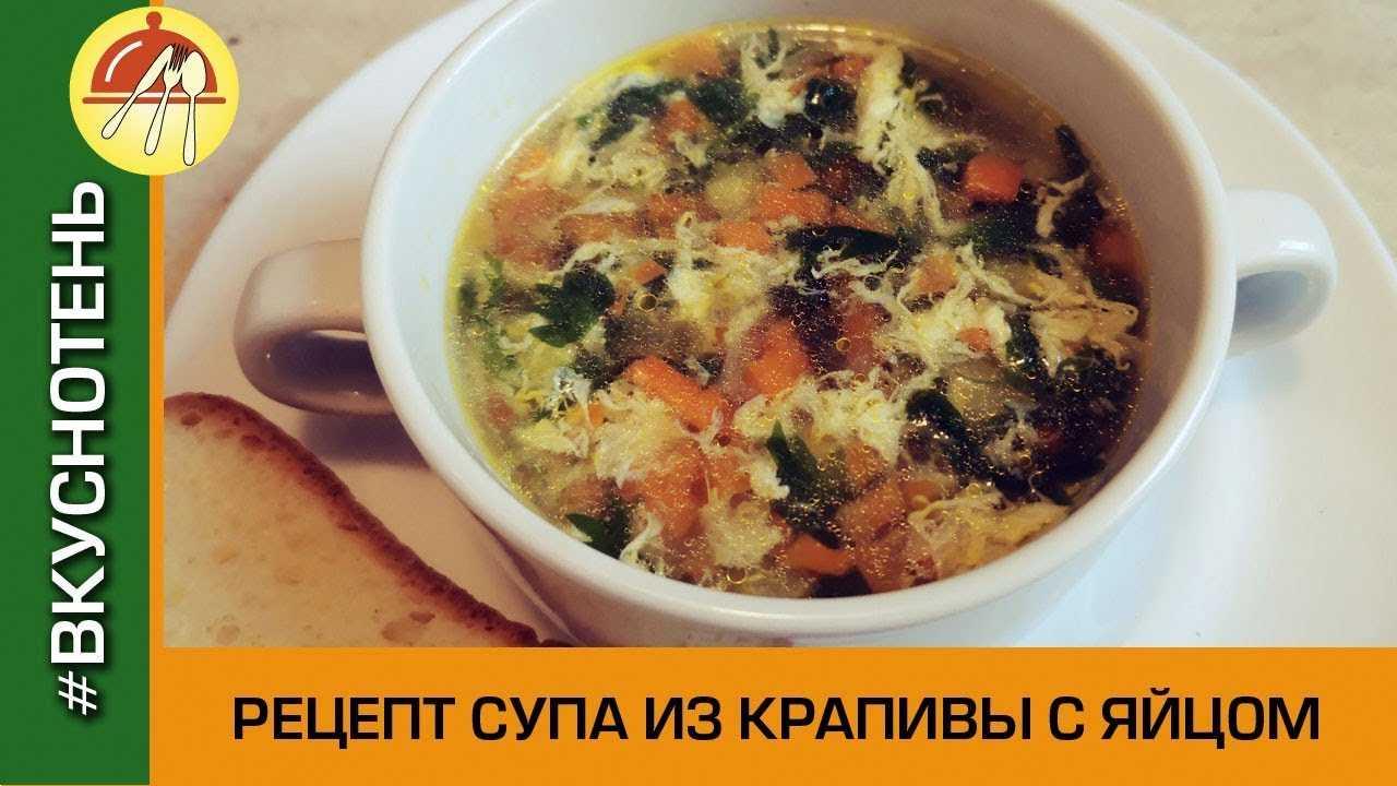 Чем полезен суп из крапивы: польза и вред блюда для взрослых и детей