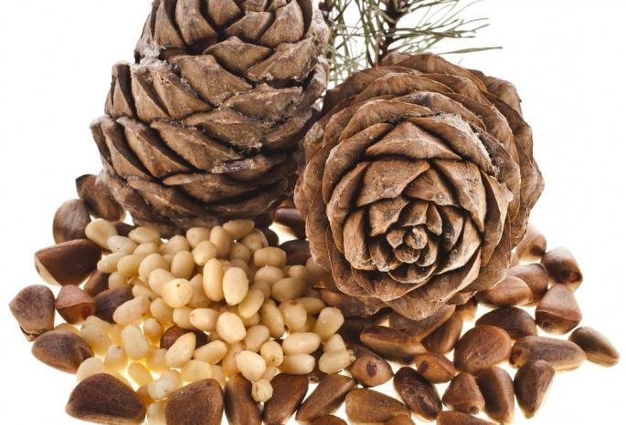 Самогон на кедровых орехах: польза, вред, рецепты, сколько брать орехов на 1 литр, как хранить, как употреблять. Что еще настаивают на кедровом орехе.