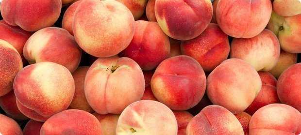 Домашнее вино из персиков. зимой и летом – одним цветом.