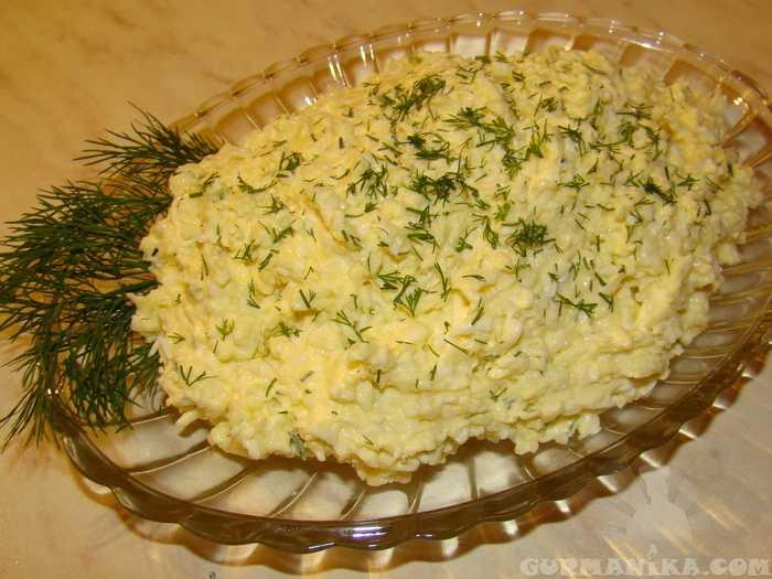 Еврейский салат с плавленным сыром и яйцом. рецепты с морковью, твердым сыром, чесноком