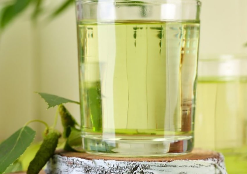 Как закатать березовый сок в домашних условиях на 3 литра: рецепт с фото