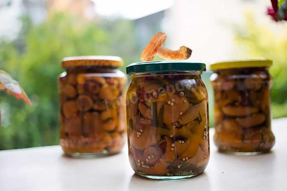 Как засолить рыжики в домашних условиях вкусно и быстро на зиму: рецепты с фото