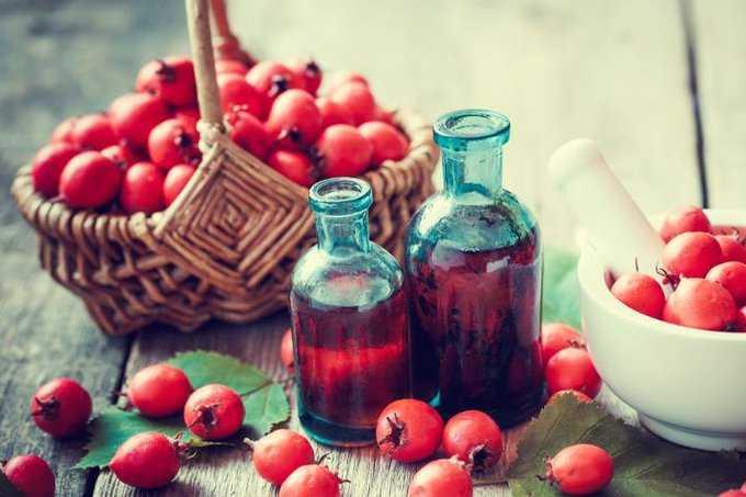 Боярышник: полезные свойства для сердечно-сосудистой и нервной системы