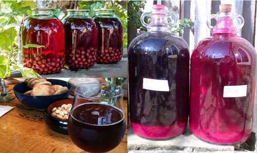 Вино из вишневого компота в домашних условиях