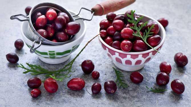 Рецепты приготовления клюквы в сахаре в домашних условиях