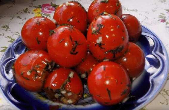 Малосольные помидоры — 6 лучших рецептов быстрой засолки