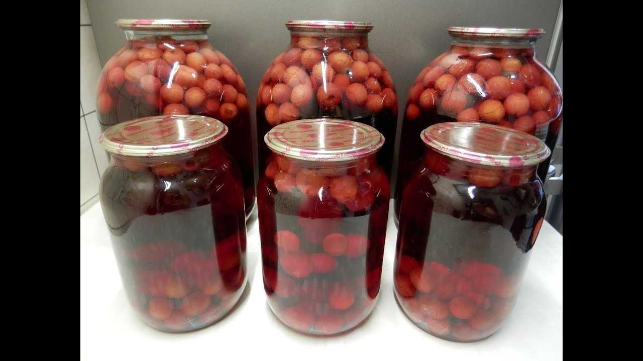 Компот из вишни на зиму – 8 рецептов в 3-х литровых банках