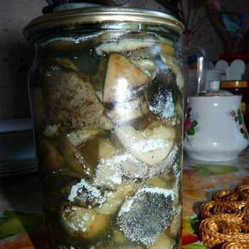 Грузди соленые на зиму в банках рецепт с фото пошагово и видео - 1000.menu