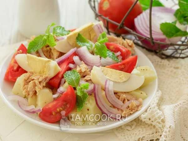 Вкусный паштет из тунца: 6 простых и вкусных рецептов