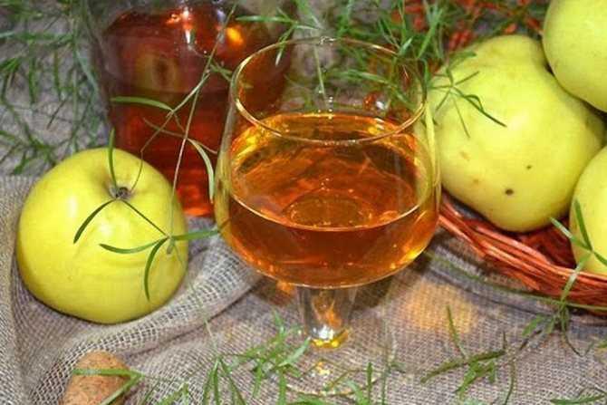 Выбираем рецепт домашнего грушевого вина