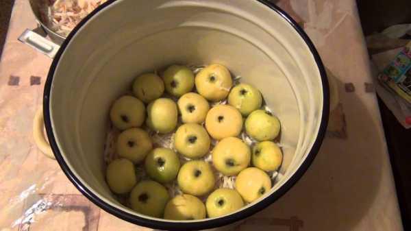 Топ-8 рецептов моченых яблок