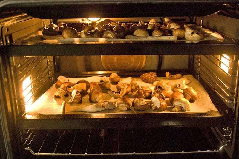 Процесс сушки белых грибов в домашних условиях