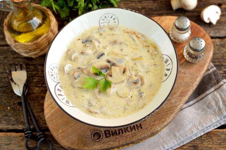 Грибной соус из белых сушеных грибов: лучшие рецепты приготовления с различными ингредиентами
