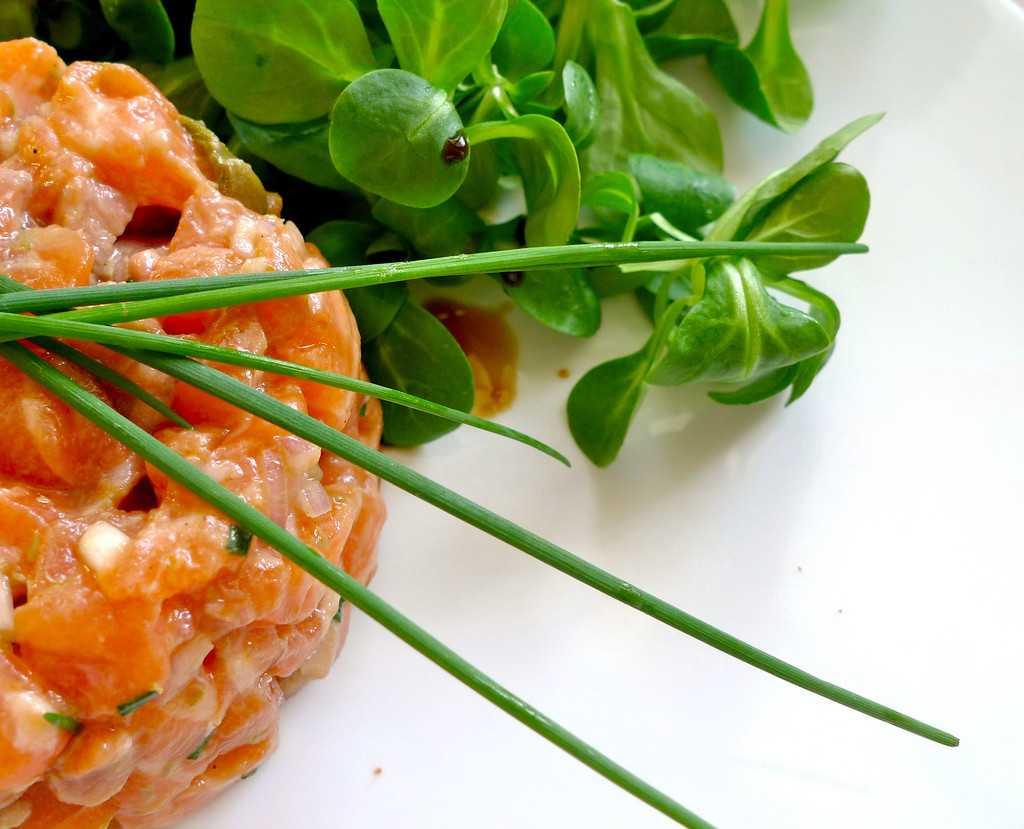 Тартар из лосося – рецепты приготовления
