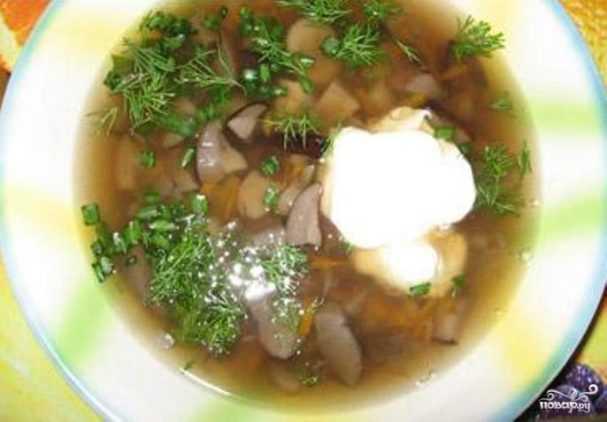 Суп из свежих подберезовиков: сколько варить, как приготовить, рецепты