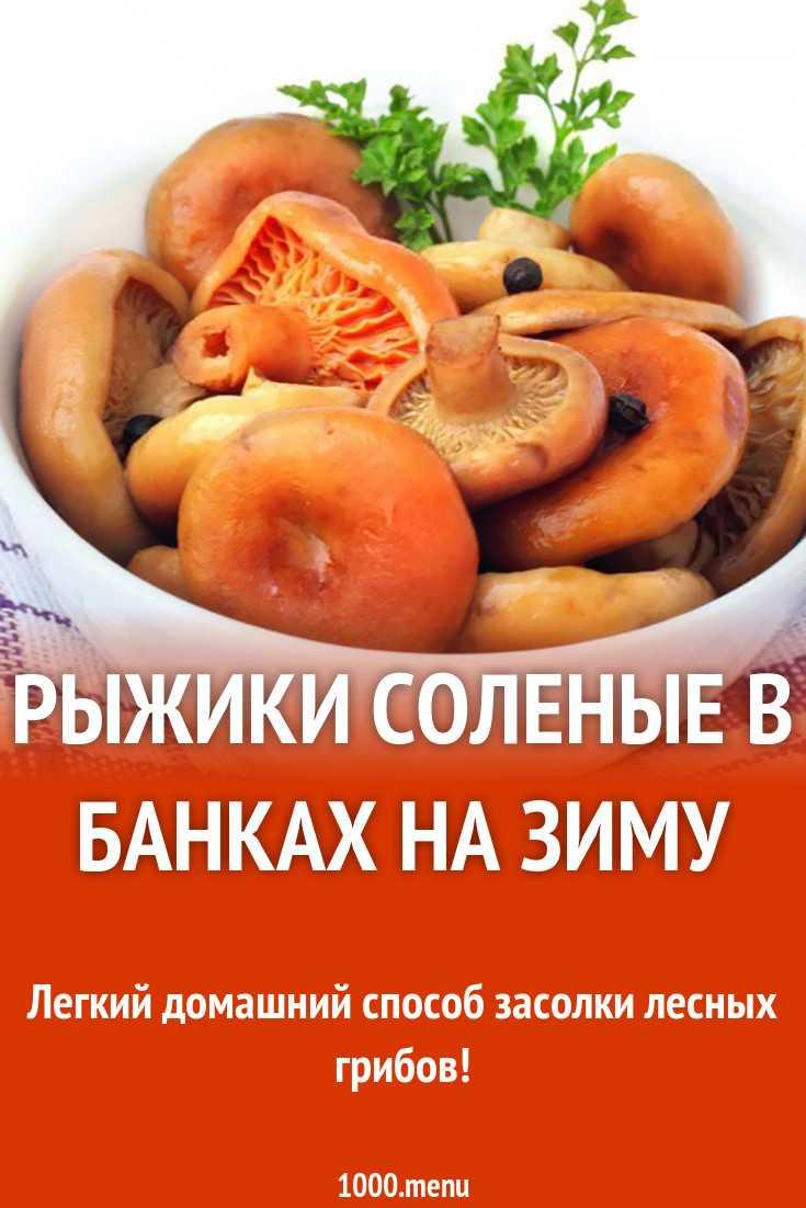 Рыжики на зиму – рецепты — засолка быстро горячим и холодным способом, заморозка, маринованные, икры из рыжиков