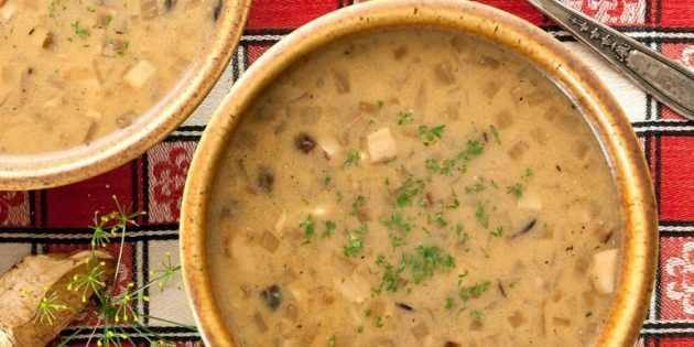 Из свежих и сушёных: 10 рецептов вкуснейших супов из белых грибов - истории - u24.ru