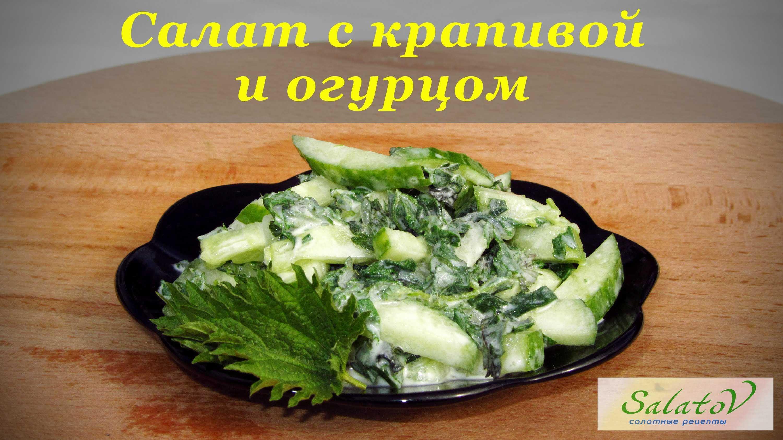 Салат из крапивы - 40 рецептов: салаты | foodini