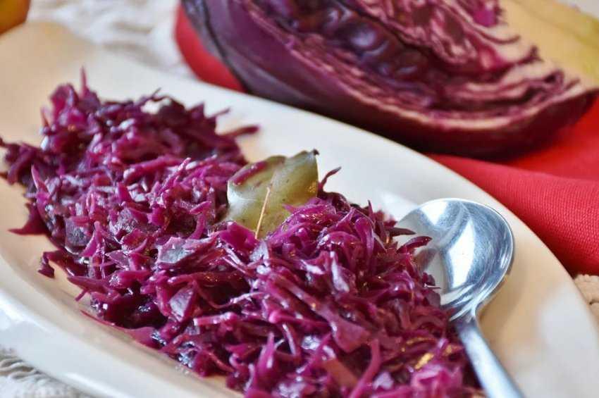 Засолка красной капусты быстрого приготовления. краснокочанная капуста на зиму, лучшие рецепты