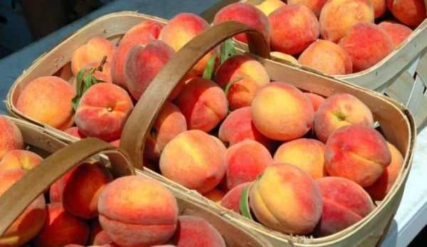 Компот из персиков на зиму: топ 10 простых рецептов на 1-3 литровую банку с фото