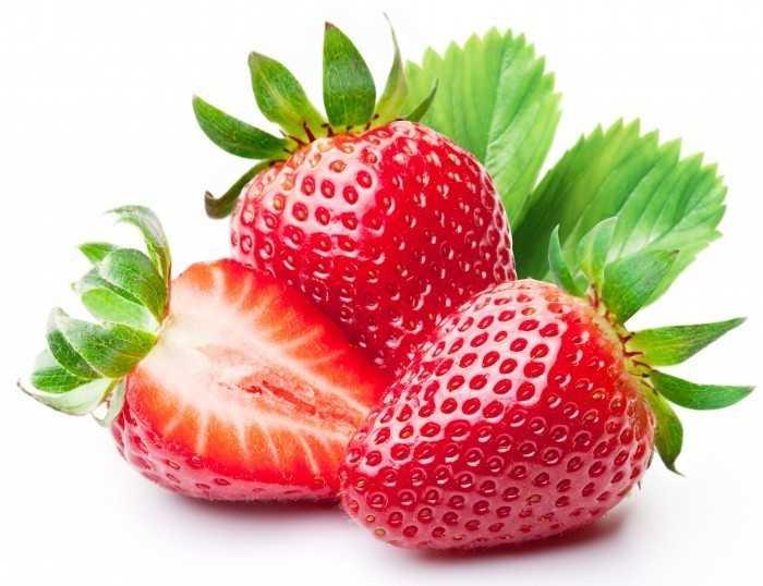 Сушка барбариса: ягоды, корни, листья