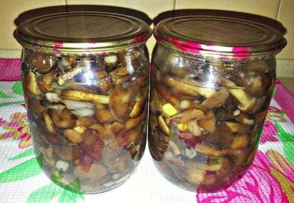 Жареные опята на зиму – подробные рецепты сырых и отваренных опят, с добавлением лука и других овощей, с уксусом и без него, с растительным маслом и животными жирами.